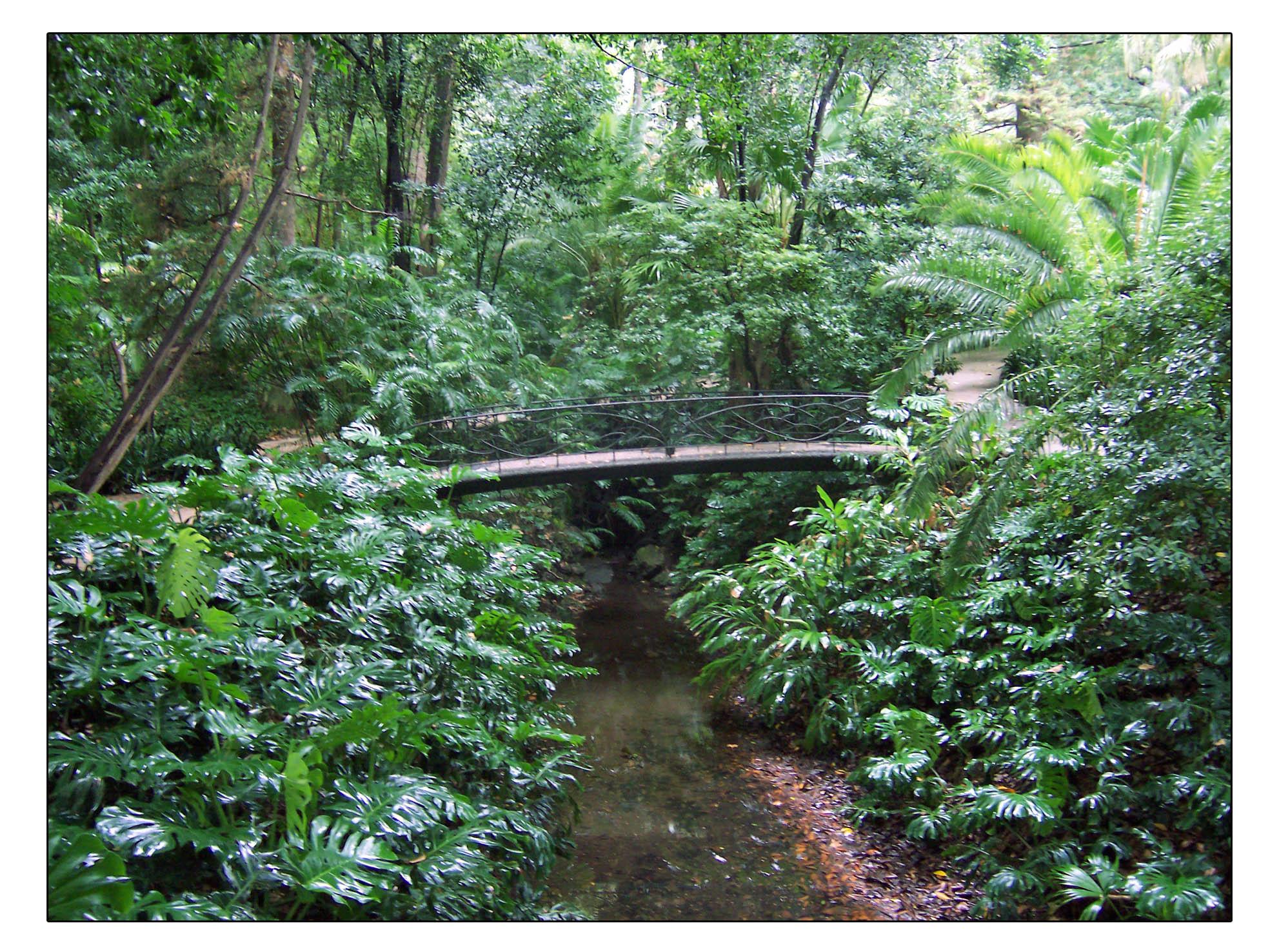 Planes minimal jard n bot nico hist rico la concepci n de for Jardin botanico de malaga